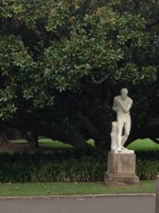 Tree Boxer